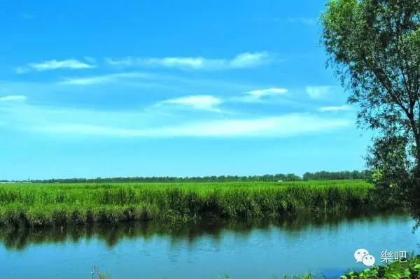 """[休闲户外]乐吧 7月4日天津""""七里海""""一日游--牡蛎滩,贝壳堤和古泻河"""